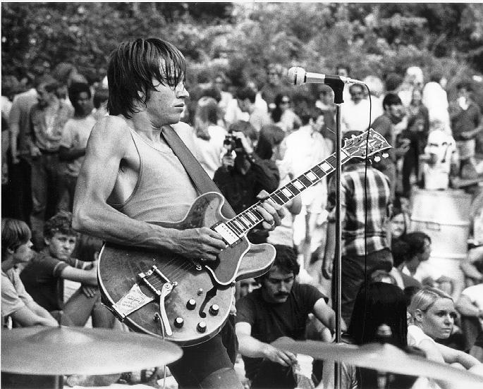 Ron Dewitte, Guitarist
